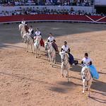 Les Amazones d'Arles à cheval par photojenico - Arles 13200 Bouches-du-Rhône Provence France