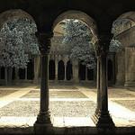 Saint-Trophime - le cloitre par Nils Bernhard - Arles 13200 Bouches-du-Rhône Provence France