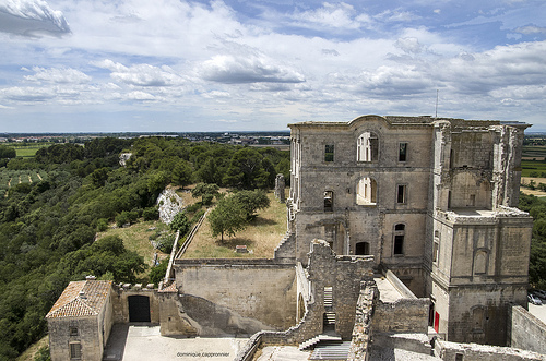 Montmajour abbey - Abbaye de Montmajour par dominique cappronnier