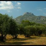 Le Mont Garlaban par Patchok34 - Aubagne 13400 Bouches-du-Rhône Provence France
