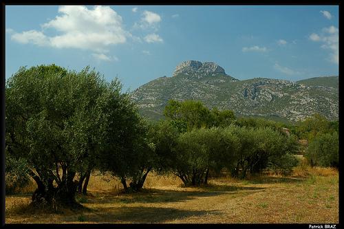 Le Mont Garlaban par Patchok34