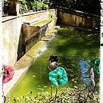 Jardin d'Alberta. De drôles de fleurs! par  - Bouc Bel Air 13320 Bouches-du-Rhône Provence France