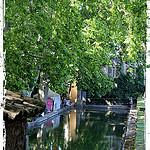 Jardins d'Albertas - Fraîcheur sous les platanes. par  - Bouc Bel Air 13320 Bouches-du-Rhône Provence France