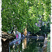 Jardins d'Albertas - Fraîcheur sous les platanes. par Tinou61 - Bouc Bel Air 13320 Bouches-du-Rhône Provence France
