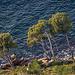 Depuis la Route des Crêtes : ne pas tomber ! par ma_thi_eu - Cassis 13260 Bouches-du-Rhône Provence France