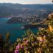 Vue sur la Baie de Cassis depuis Cap Canaille par Jamani Caillet - Cassis 13260 Bouches-du-Rhône Provence France