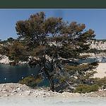 Béatitude dans la calanque de port-miou par laetitiablabla (ramadan mubarak XD) - Cassis 13260 Bouches-du-Rhône Provence France