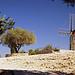 Moulin de Daudet, Provence par Vaxjo - Fontvieille 13990 Bouches-du-Rhône Provence France