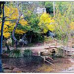 Dans la Forêt de Saint-Pons par Tinou61 - Gémenos 13420 Bouches-du-Rhône Provence France