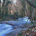 Forêt de Gemenos par steph13170 - Gémenos 13420 Bouches-du-Rhône Provence France
