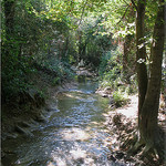 Parc de Saint Pons - Le Fauge par vhsissi - Gémenos 13420 Bouches-du-Rhône Provence France