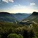 Route menant au col de l'Espigoulier par gantoo - Gémenos 13420 Bouches-du-Rhône Provence France