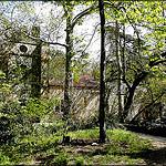 Parc de St Pons : L'abbaye cistercienne, cachée par la verdure par  - Gémenos 13420 Bouches-du-Rhône Provence France