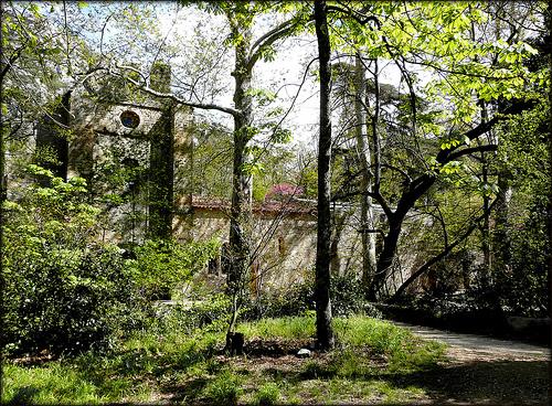 Parc de St Pons : L'abbaye cistercienne, cachée par la verdure by myvalleylil1
