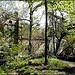 Parc de St Pons : L'abbaye cistercienne, cachée par la verdure par myvalleylil1 - Gémenos 13420 Bouches-du-Rhône Provence France