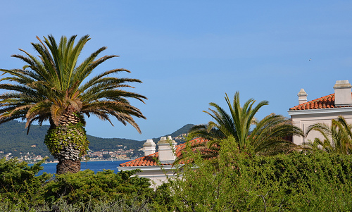 Villa et Paysage méditerranéen by FranceParis92