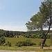 Paysage autour de Lambesc (Nationale 7) par Meteorry - Lambesc 13410 Bouches-du-Rhône Provence France
