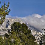 Entre les arbres - Le sommet de la montagne Sainte-Victoire par Charlottess - Le Tholonet 13100 Bouches-du-Rhône Provence France