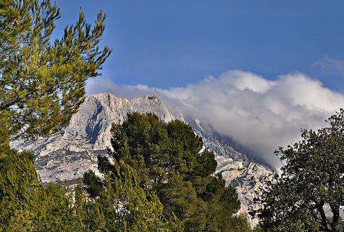 Entre les arbres - Le sommet de la montagne Sainte-Victoire par Charlottess