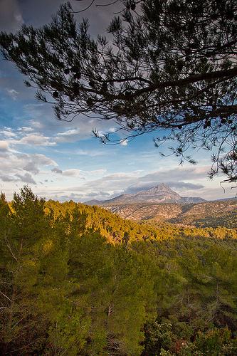 Randonnée autour de la Réserve Naturelle Sainte Victoire  by Look me Luck Photography