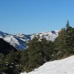 Belle journée de décembre.  - Alpilles by bernard BONIFASSI - Les Baux de Provence 13520 Bouches-du-Rhône Provence France