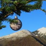 Noël arrive - Alpilles by bernard BONIFASSI - Les Baux de Provence 13520 Bouches-du-Rhône Provence France