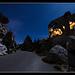 Magie de Provence sur la route des Baux par NeoNature - Les Baux de Provence 13520 Bouches-du-Rhône Provence France