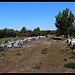 Ruches à Peyrolles-en-Provence par J@nine - Peyrolles-en-Provence 13860 Bouches-du-Rhône Provence France