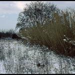 Marignane sous la neige by Patchok34 - Marignane 13700 Bouches-du-Rhône Provence France