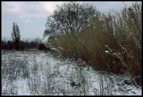Marignane sous la neige by Patchok34