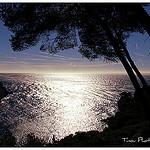 Contre jour d'azur par Tinou61 - Marseille 13000 Bouches-du-Rhône Provence France