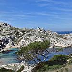 Les îles du Frioul  par Charlottess - Marseille 13000 Bouches-du-Rhône Provence France