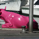 A Pink Cow lost in Marseille par Elmo Blatch - Marseille 13000 Bouches-du-Rhône Provence France