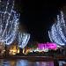 Noël sur le vieux port de Marseille by Josiane D. - Marseille 13000 Bouches-du-Rhône Provence France