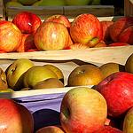 Pommes au marché de toutes les couleurs par Fanette13 - Marseille 13000 Bouches-du-Rhône Provence France