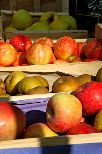 Pommes au marché de toutes les couleurs by Fanette13