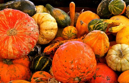 légumes oubliés sur le marché de Marseille par Fanette13