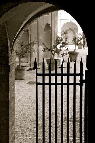 Vue sur cour... Centre de la Vieille Charité par Fanette13