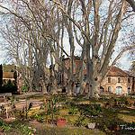Une ferme dans la vallée des Baux par Tinou61 - Maussane les Alpilles 13520 Bouches-du-Rhône Provence France