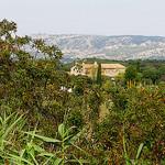 Un mas perdu dans les alpilles par cigale4 - Maussane les Alpilles 13520 Bouches-du-Rhône Provence France
