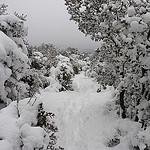 Neige à la montagne Sainte-Victoire par bruno Carrias - Puyloubier 13114 Bouches-du-Rhône Provence France
