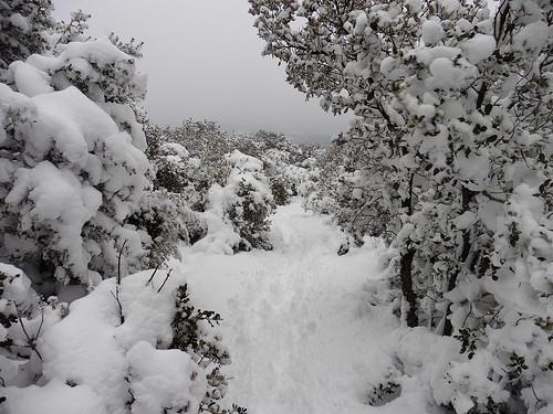 Neige à la montagne Sainte-Victoire par bruno Carrias