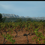 Vignoble &amp; Montagne Sainte-Victoire par  - Rousset 13790 Bouches-du-Rh&ocirc;ne Provence France