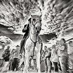 Gardians à cheval - Saintes Marie de la Mer par Zeucat DH Photography - Saintes Maries de la Mer 13460 Bouches-du-Rhône Provence France
