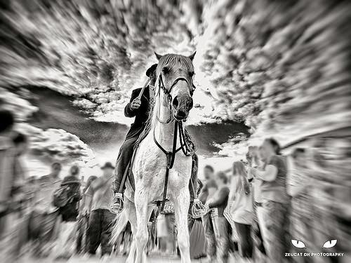Gardians à cheval - Saintes Marie de la Mer by Zeucat DH Photography