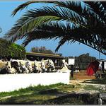 Ambiance camarguaise... by Idealist'2010 - Saintes Maries de la Mer 13460 Bouches-du-Rhône Provence France