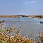 L'étang  - Saintes-Maries-de-la-Mer par  - Saintes Maries de la Mer 13460 Bouches-du-Rhône Provence France