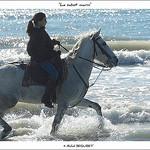Randonnée à cheval - Le sabot marin par michel.seguret - Saintes Maries de la Mer 13460 Bouches-du-Rhône Provence France