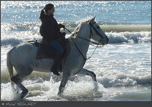Randonnée à cheval - Le sabot marin par michel.seguret