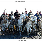 Camargue, sable de traditions ... par  - Saintes Maries de la Mer 13460 Bouches-du-Rhône Provence France